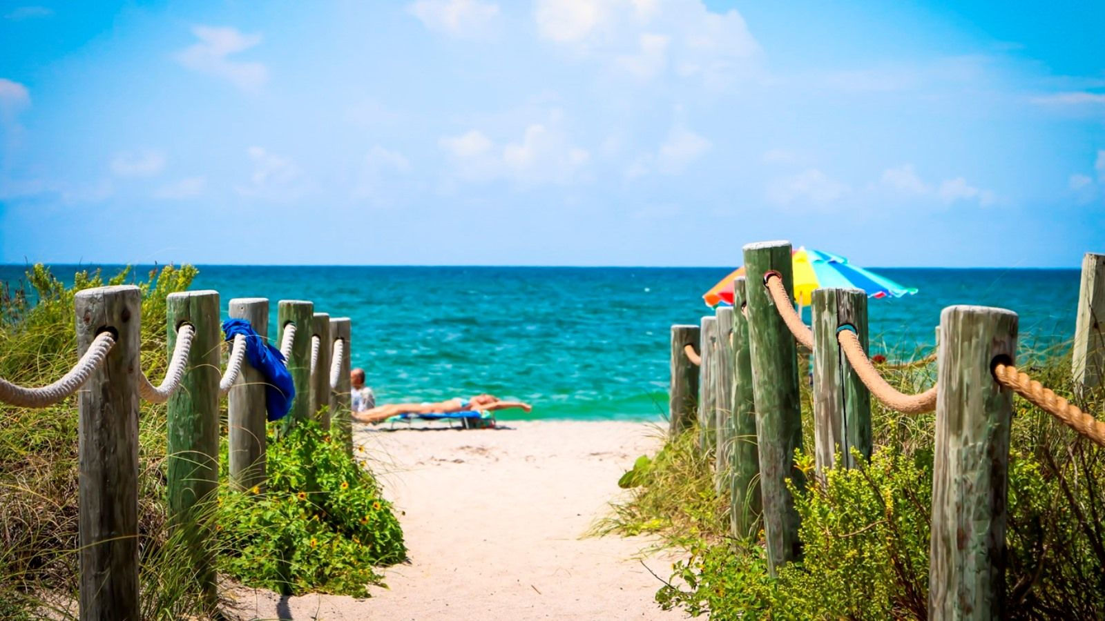 Sarasota attractions - Blind Pass Beach Park - The Westin Sarasota